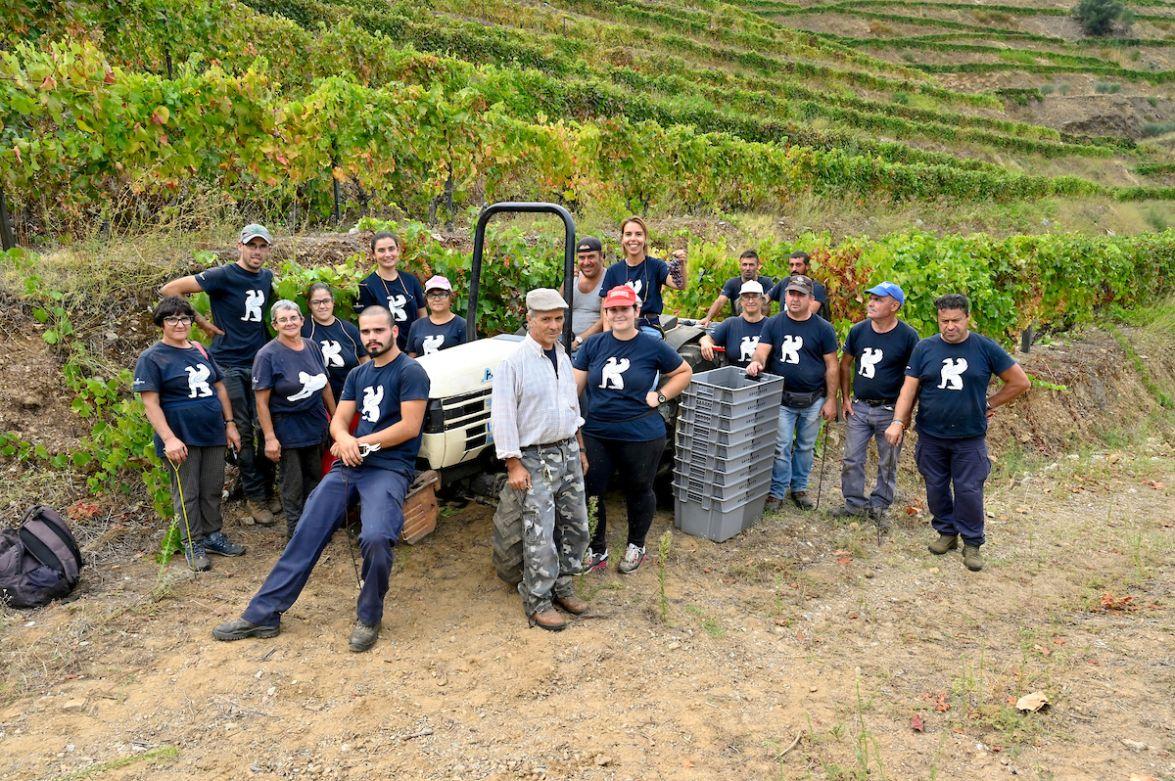 Harvest team